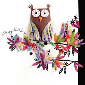 Happy Owl - Birthday