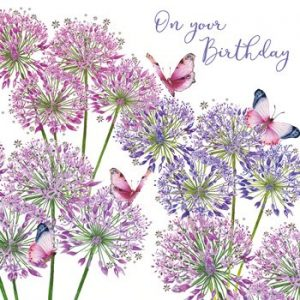 Alliums - Birthday