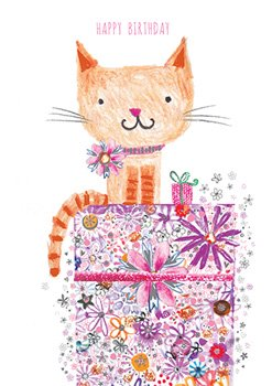 Cat on present - Happy Birthday