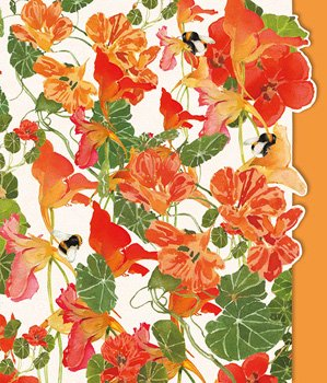 Nasturtiums - Blank for your own message