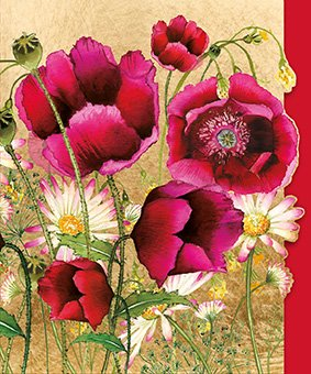 Red Poppies- Blank for your own message