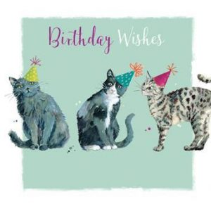 3 Cats - Birthday